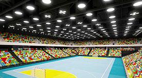 Pilatus Arena - Ein tolles Projekt ohne Risiko für die Öffentliche Hand